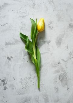 Вид сверху желтый тюльпан на столе