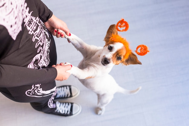 Top view of a young woman with her cute small dog wearing a pumpkin diadem. woman wearing a skeleton costume. halloween concept. indoors