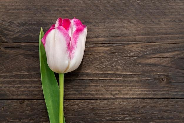 Вид сверху на розовый тюльпан на деревенской деревянной стене