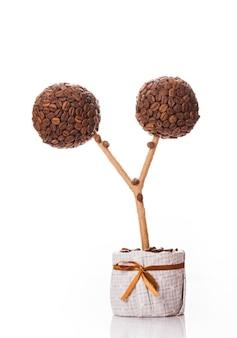 토피어리 - 흰색으로 분리된 커피콩, 계피, 레이스로 장식된 나무