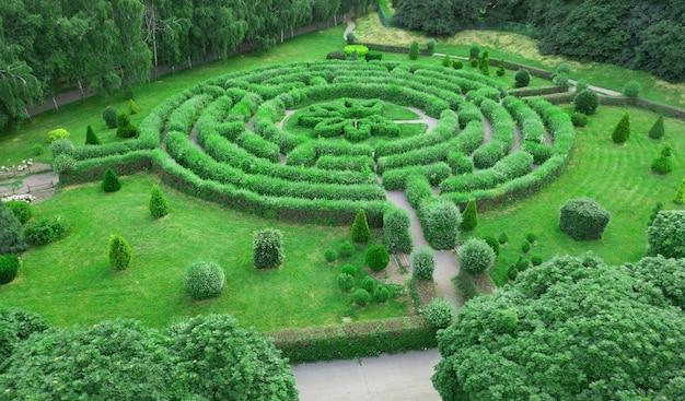 Топиарий в виде лабиринта в ботаническом саду гришка в киеве.