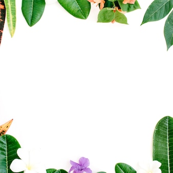 Topical exotic colored leaf frame on white