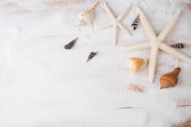 Topview夏の背景。貝殻とヒトデがたくさんある砂浜。ヴィンテージトーン、レトロフィルター効果、ソフトフォーカス、低照度(選択フォーカス)