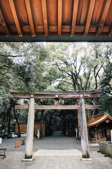Torii gate entrance in japan