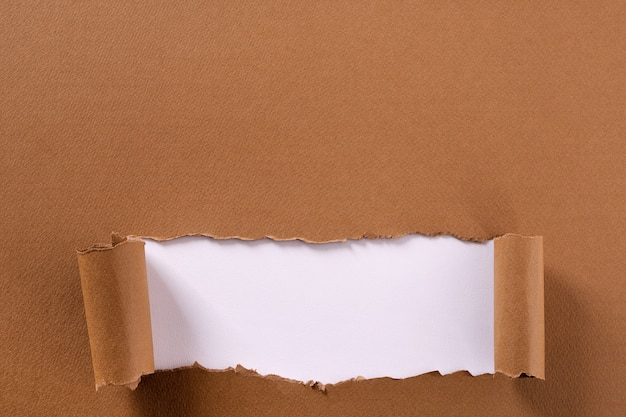 Torn brown paper background frame strip white curled bottom edge