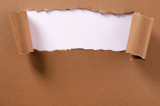 Torn brown paper background frame strip white curled edges