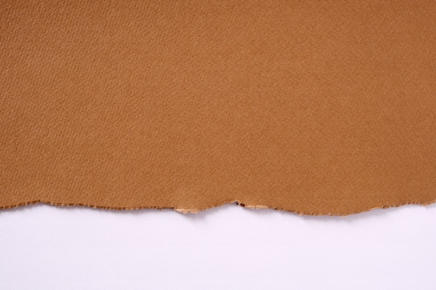 Torn brown paper border white background