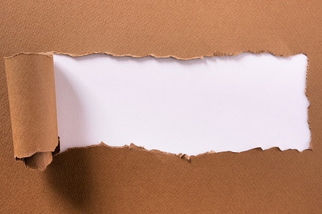 Torn brown paper center strip white background curled edge