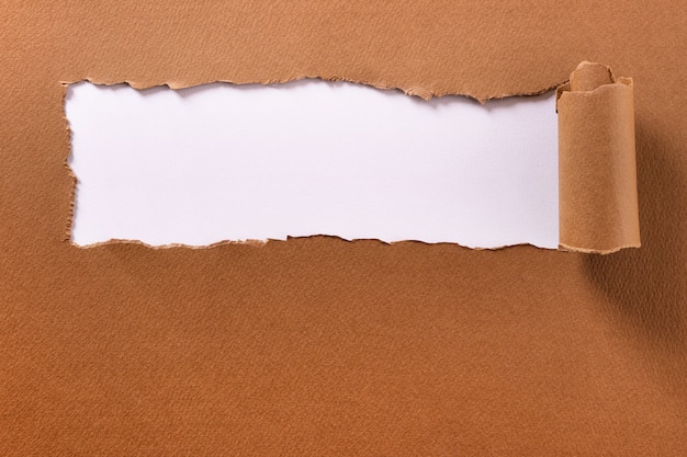 Torn brown paper rolled edge header frame white background