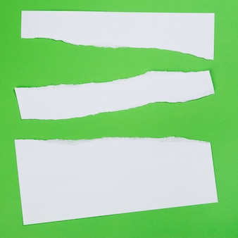 Torn paper on green background