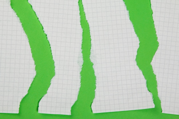 Torn pieces of checkered paper