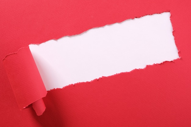 Torn red paper strip curled edge angled diagonal white background
