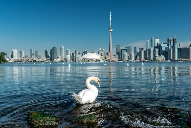 トロントの街の風景、カナダ