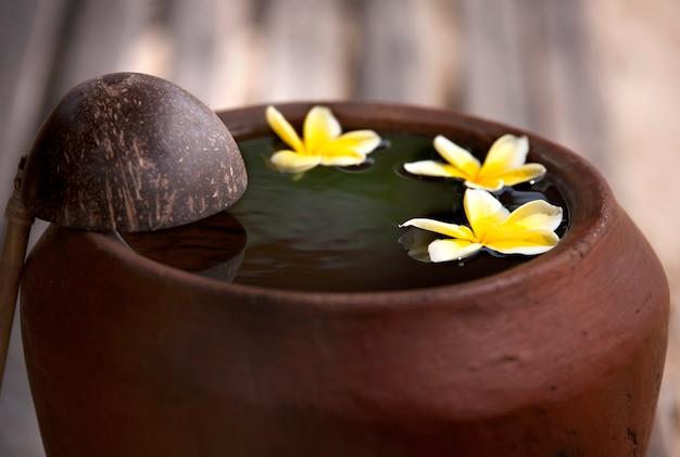 自然に触れる。スパ瞑想ムードのために禅スタイルのボウルの水に飾られた花のプルメリアまたはフランジパニでリラックスして平和な粘土の水差し