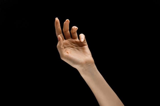 夜の感動。黒のスタジオの背景に分離されたタッチを取得するジェスチャーを示す女性の手。人間の感情、感情、藻類学またはビジネスの概念。