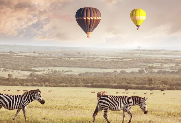 ナミビアのアフリカのサファリの観光名所-サバンナの上の風船