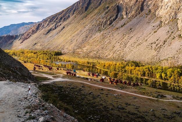 チュリシュマン川の渓谷にある観光拠点。ロシア、アルタイ共和国、ウラガンスキー地区