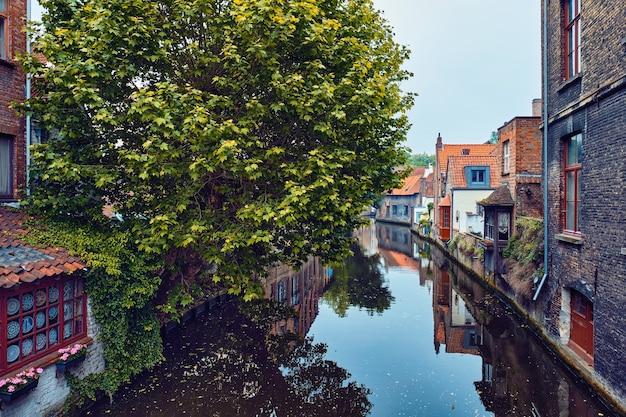 運河ブルージュブルージュベルギーの観光船