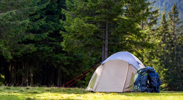 Tourist camp on green meadow with fresh grass in carpathian mountains forest. hikers tent and backpacks at camping site. active lifestyle, outdoor activity, vacation, sports and recreation concept.