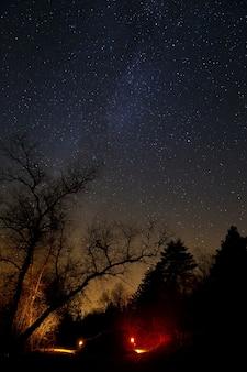 Туристическая машина в лесу на фоне звездного неба.