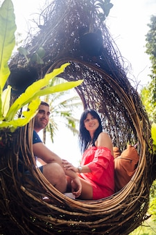 A tourist couple sitting on a large bird nest on a tree at bali island