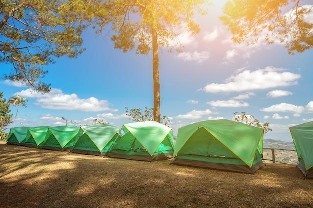 산에는 초원 가운데 숲 캠프에서 관광.