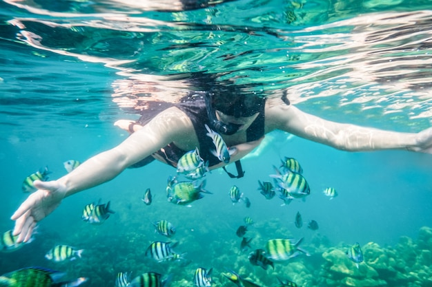 Tourist man snorkeling with school of fish in tropical sea on vacation