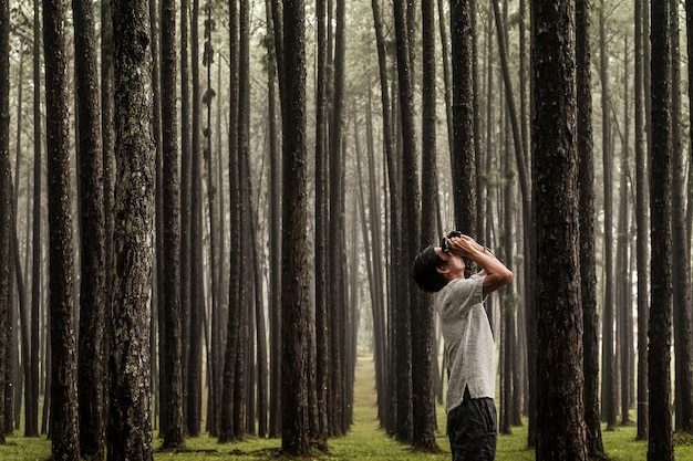 A tourist man take photo in pine forest