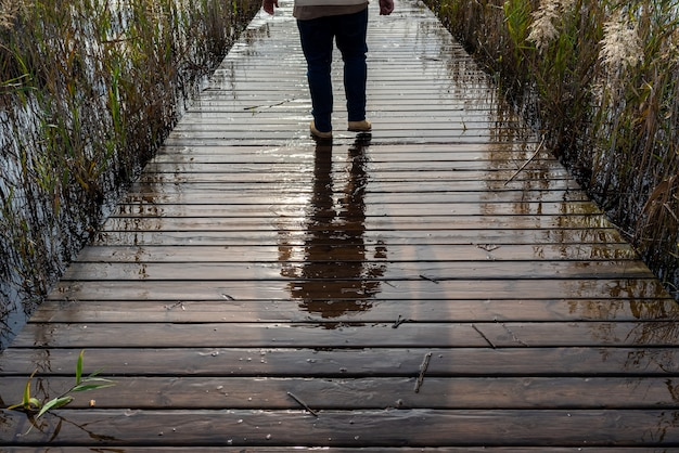 Tourist person walking on the flooded footbridge of lake albufera.