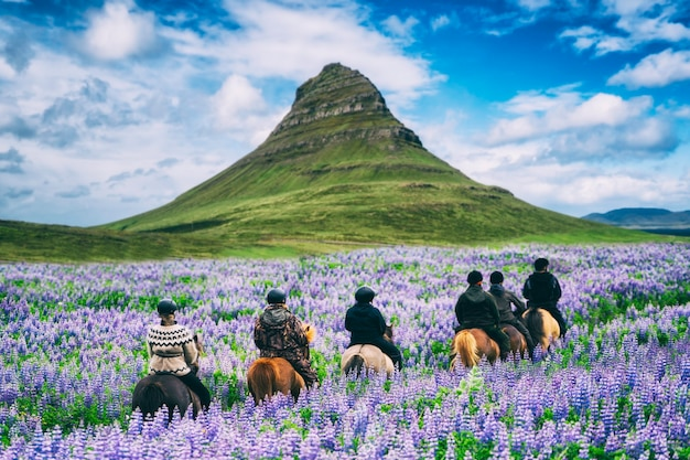 Tourist ride horse at kirkjufell in iceland.