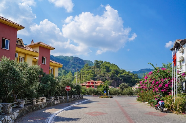 開花植物、太陽、樹木が茂った山々を背景にホテルと観光リビエラ。マルマリス市。