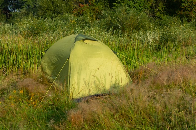 자연과 숲을 배경으로 한 관광 텐트.