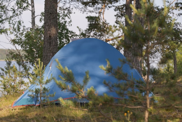 Tourist tent in a picturesque forest. hiking theme