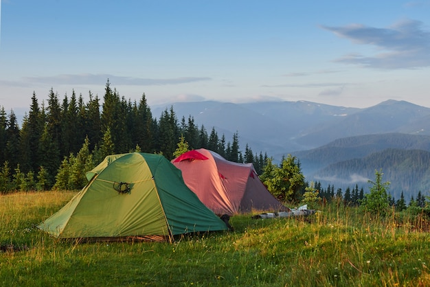 Tourist tents are in the green misty forest at the mountains.