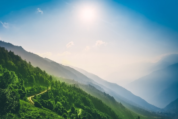 백그라운드 트레킹 루트에서 산 계곡 푸른 하늘에 녹색 숲 사이 관광 트레일