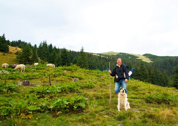 Tourist with a dog and lambs on top of a mountain