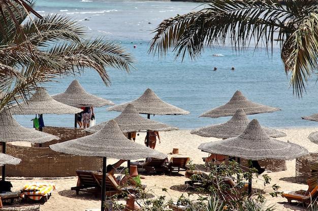 홍해 해변에서 쉬고 있는 관광객들 이집트 리조트로 돌아가는 관광객들