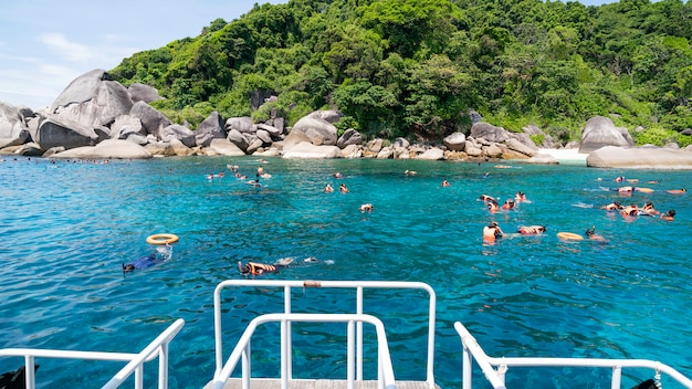 観光客はタイ南部のパンガー県シミラン諸島国立公園でダイビングを楽しむ