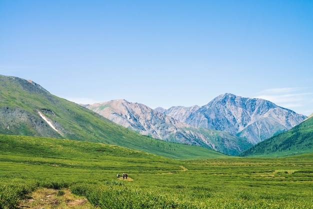 Tourists goes trail to giant mountains with snow in sunny day. small tourists in green valley. meadow with rich vegetation of highlands in sunlight. amazing mountain landscape of majestic nature.