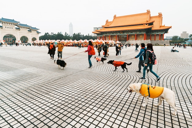 Tourists and a group of dogs walk on the grounds of the national theater of taiwan