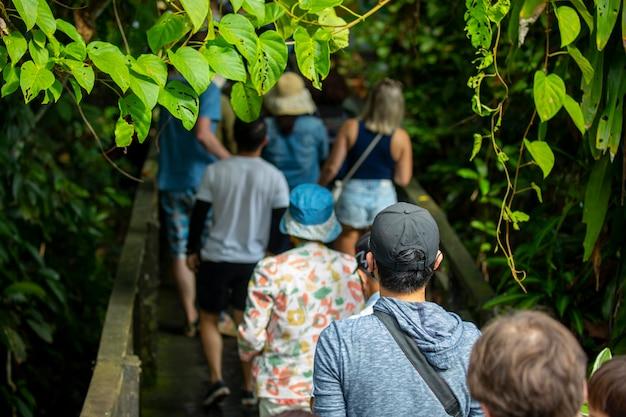 Туристы в парке охраны животных, туристическом месте в юго-восточной азии, сандакане, сабахе, борнео, малайзия