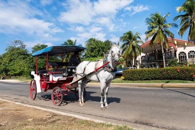 쿠바 바라데로의 아름다운 야자수와 집들을 배경으로 말 택시를 탄 관광객들.