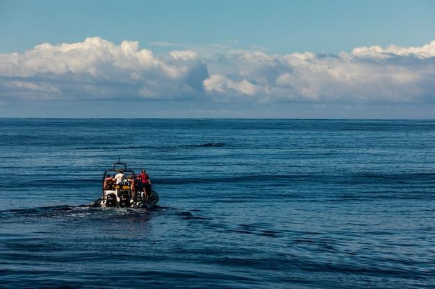 Туристы на лодке для наблюдения за китами