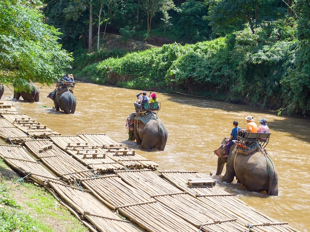 Tourists riding on elephant trekking in thailand