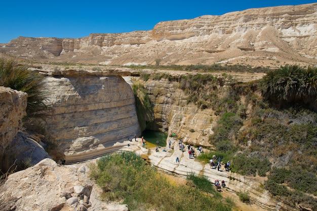 Туристы у бассейна - источник агара в пустыне негев в израиле