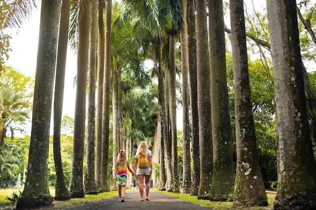 Туристы гуляют по проспекту с большими пальмами в ботаническом саду памплемус на острове маврикий.