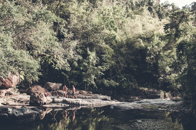 Tourists walks through the woods