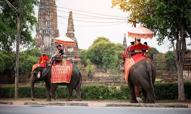 Tourists with an elephant at wat chaiwatthanaram temple in ayutthaya historical park