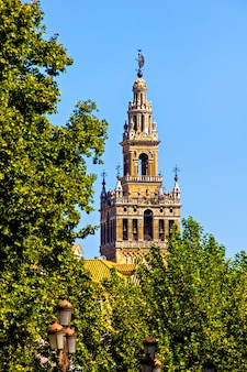 Tower of plaza de espana, seville, spain