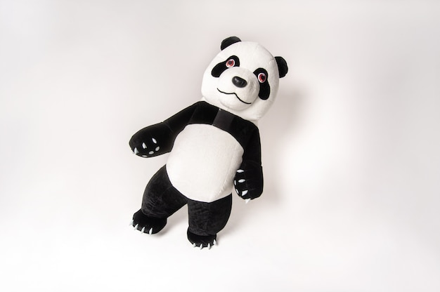 Toy big panda with a man inside on a white background.